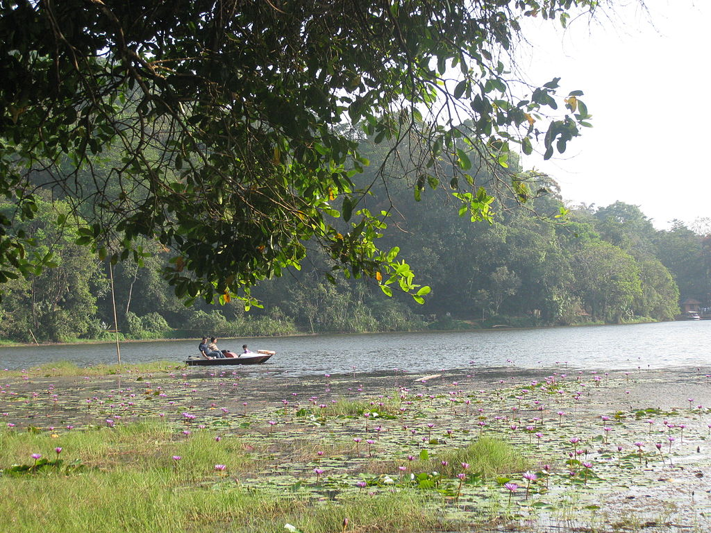 Places to see in Wayanad