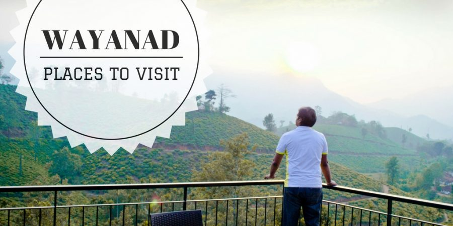 Places to Visit in Wayanad – Must See!
