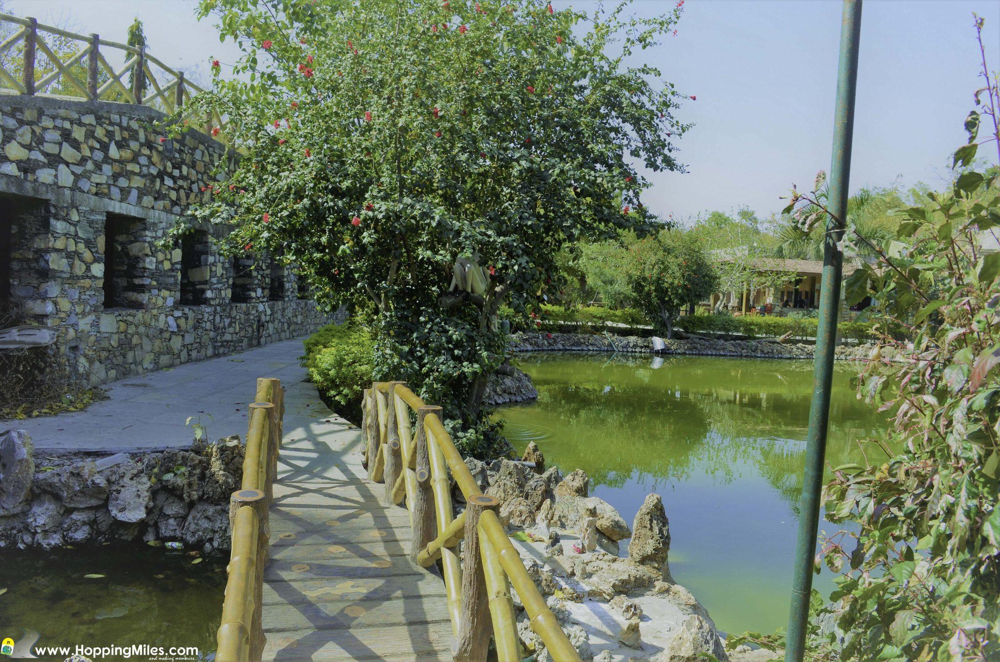 Haldighati Udaipur (14 of 17)