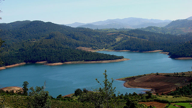 Best Ooty Itinerary – Places to see and stay